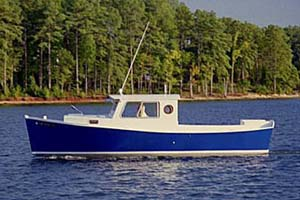 Blue Jacket 24. Anyone built one?